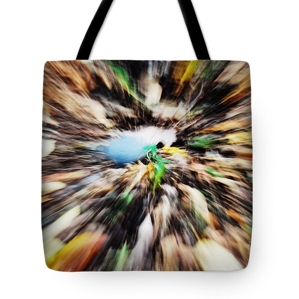 Autumn Colors Tote Bag by Paul Ward