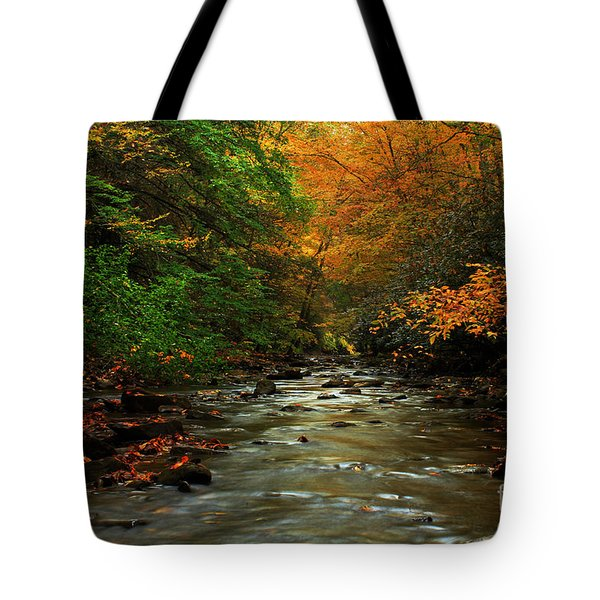 Autumn Creek Tote Bag by Melissa Petrey