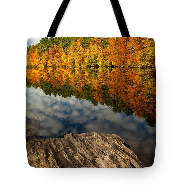 Autumn Day Tote Bag by Karol  Livote