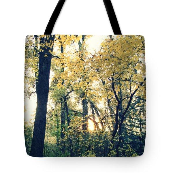 Autumn Evening Tote Bag by Jessica Myscofski