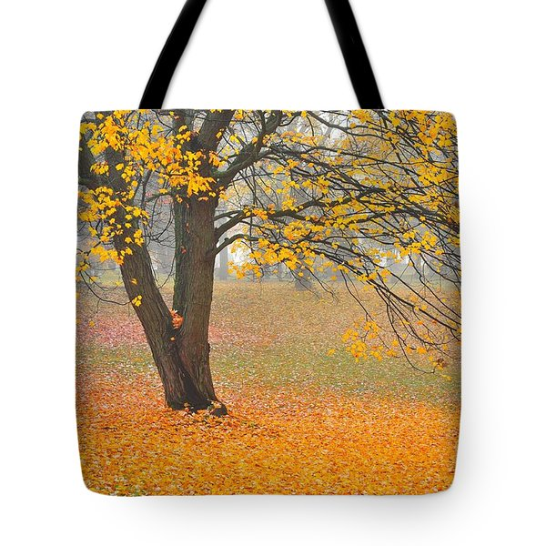 Autumn Fallen Tote Bag by Terri Gostola