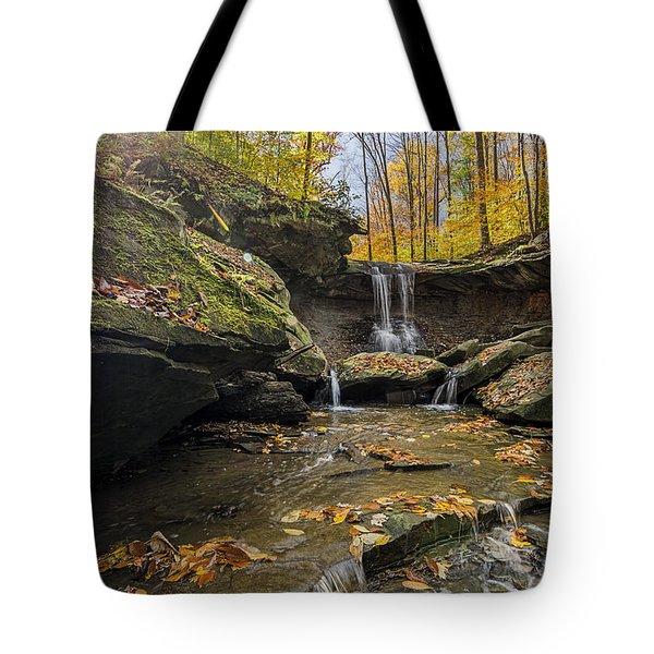 Autumn Flows Tote Bag by James Dean