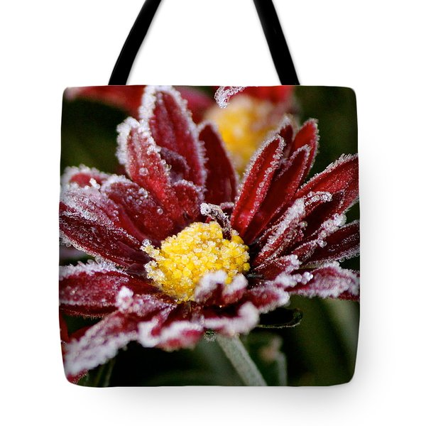 Autumn Frost Tote Bag by Tiffany Erdman