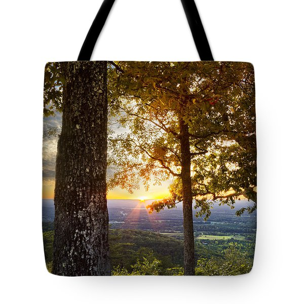 Autumn Highlights Tote Bag by Debra and Dave Vanderlaan
