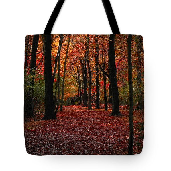 Autumn IIi Tote Bag by Raymond Salani III