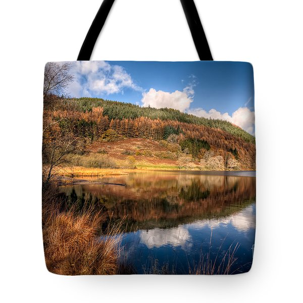 Autumn In Wales Tote Bag by Adrian Evans