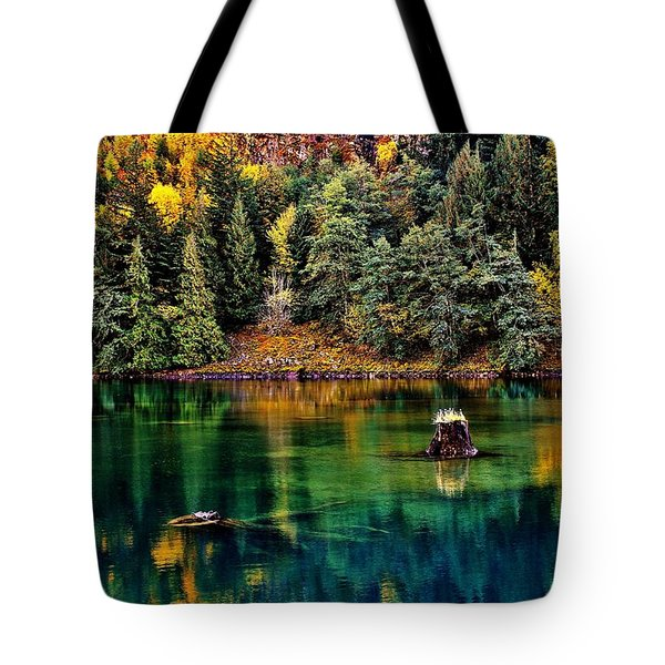 Autumn Jade Tote Bag by Benjamin Yeager