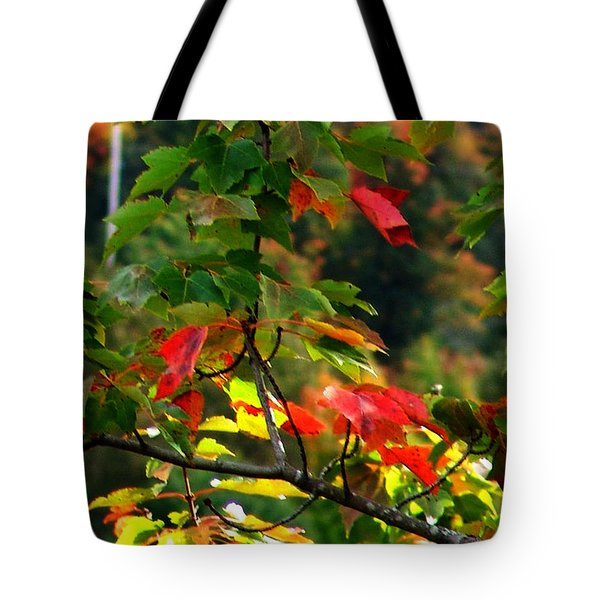 Autumn Leaves At St. Ann's Bay Tote Bag by Janet Ashworth