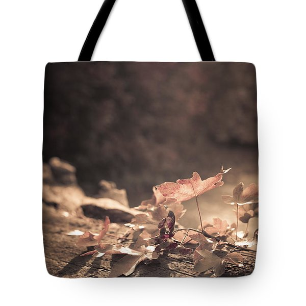 Autumn Leaves Tote Bag by Amanda And Christopher Elwell