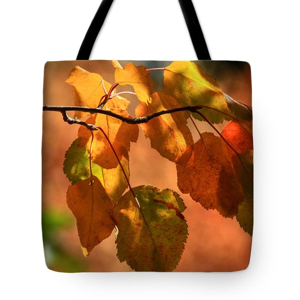 Autumn Leaves Tote Bag by Donna Kennedy