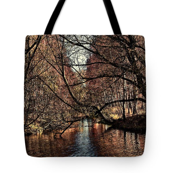 Autumn Light By Leif Sohlman Tote Bag by Leif Sohlman