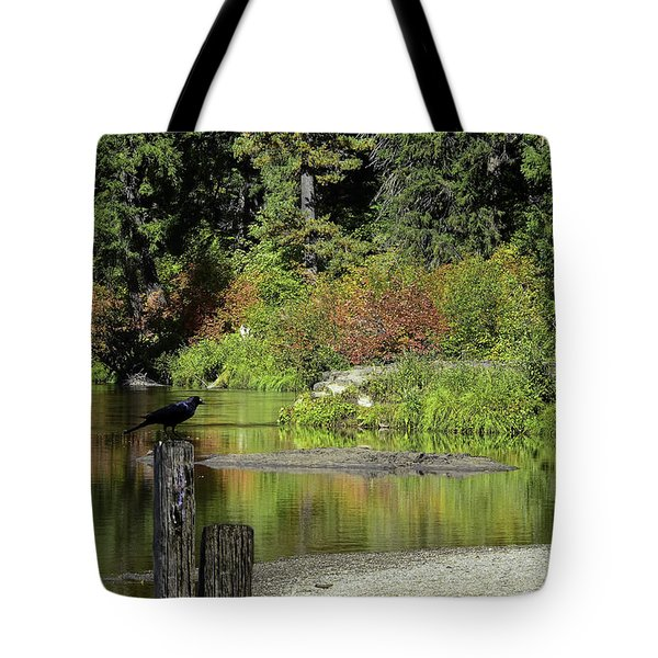 Autumn Melody Tote Bag by Diane Schuster
