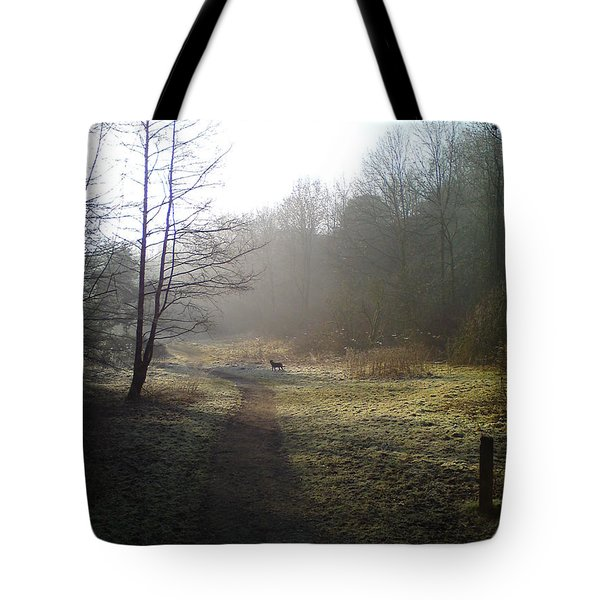 Autumn Morning 4 Tote Bag by David Stribbling