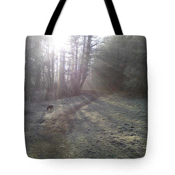 Autumn Morning 5 Tote Bag by David Stribbling