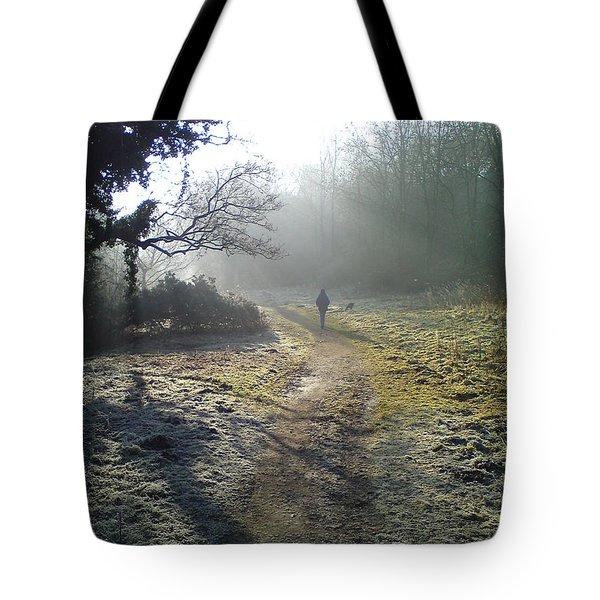Autumn Morning  Tote Bag by David Stribbling