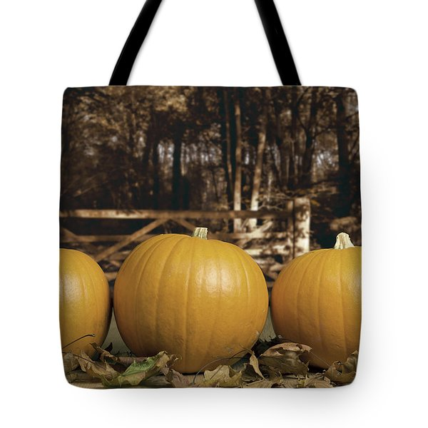 Autumn Pumpkins Tote Bag by Amanda And Christopher Elwell