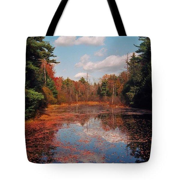 Autumn Reflections Tote Bag by Joann Vitali