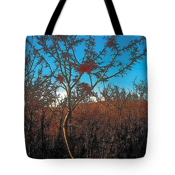 Autumn Tote Bag by Terry Reynoldson