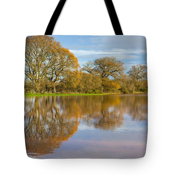 Autumn Trees Tote Bag by Sebastian Wasek