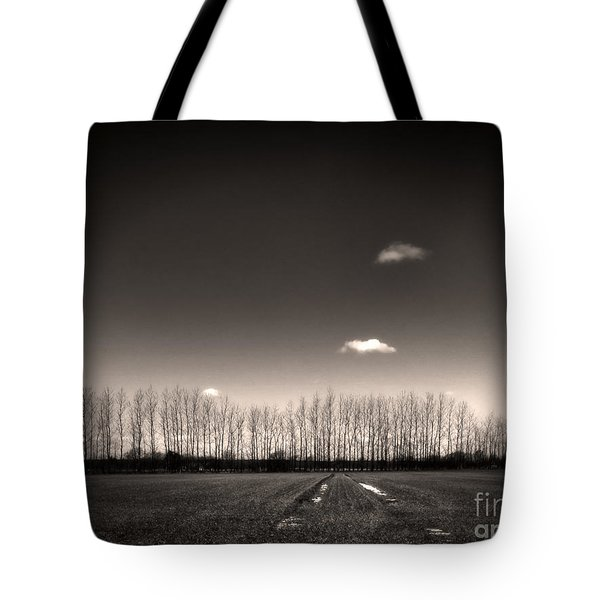 autumn trees Tote Bag by Stylianos Kleanthous