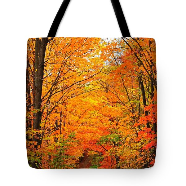 Autumn Tunnel of Trees Tote Bag by Terri Gostola