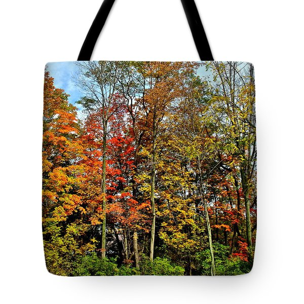 Autumnal Foliage Tote Bag by Frozen in Time Fine Art Photography