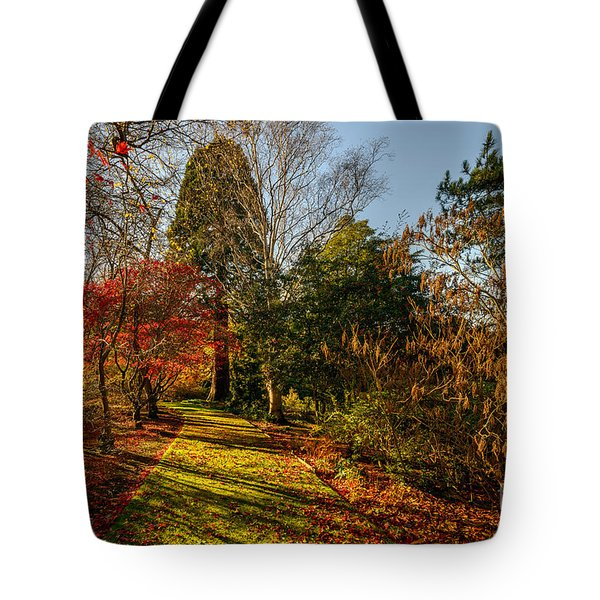 Autumnal Forest Tote Bag by Adrian Evans