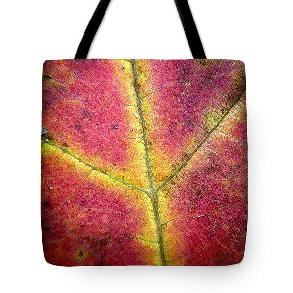 Autumnal Intricacy Tote Bag by Natasha Marco