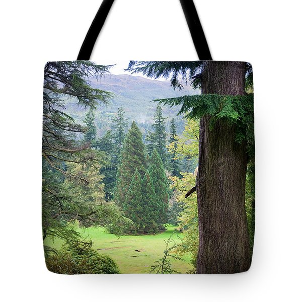 Autumnal Trees In Benmore Botanical Garden. Scotland Tote Bag by Jenny Rainbow