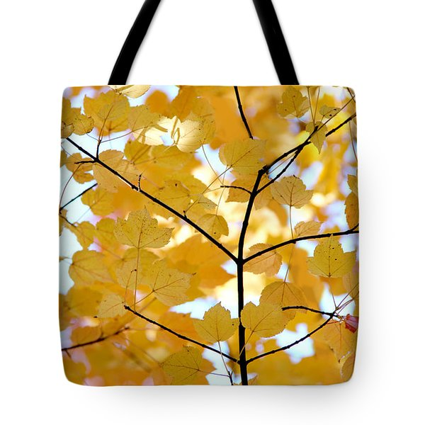 Autumn's Golden Leaves Tote Bag by Jennie Marie Schell