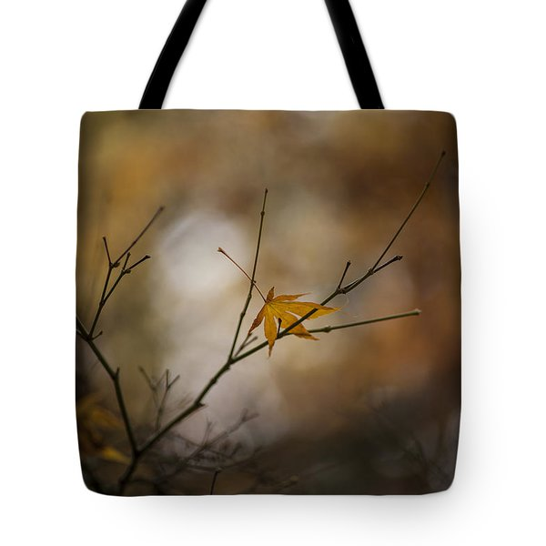 Autumns Solitude Tote Bag by Mike Reid