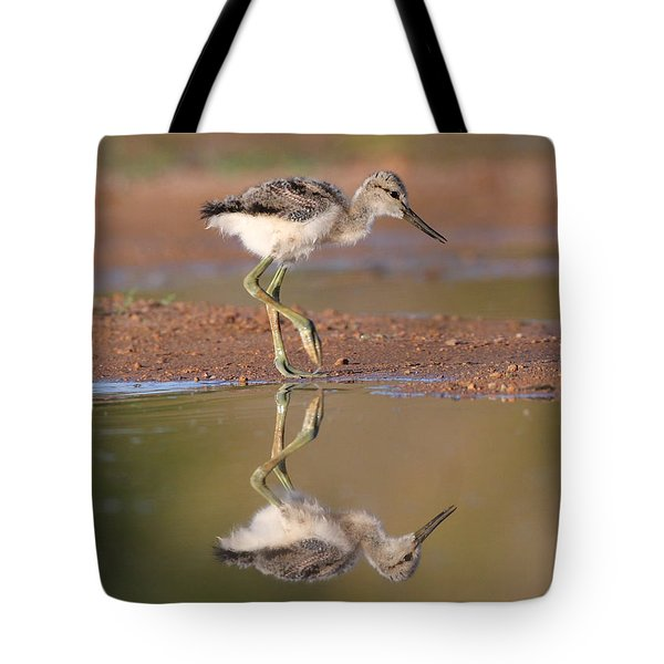Avocet Chick  Tote Bag by Ruth Jolly