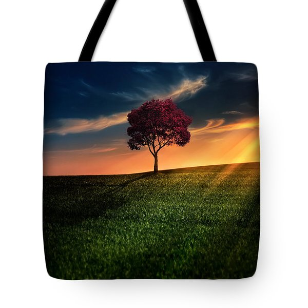 Awesome Solitude Tote Bag by Bess Hamiti