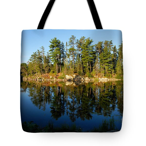 Awesub Morning 2 Tote Bag by Larry Ricker