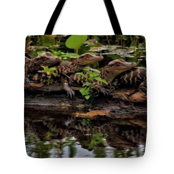 Baby Alligators Reflection Tote Bag by Dan Sproul