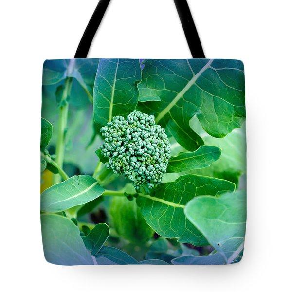 Baby Broccoli - Vegetable - Garden Tote Bag by Andee Design