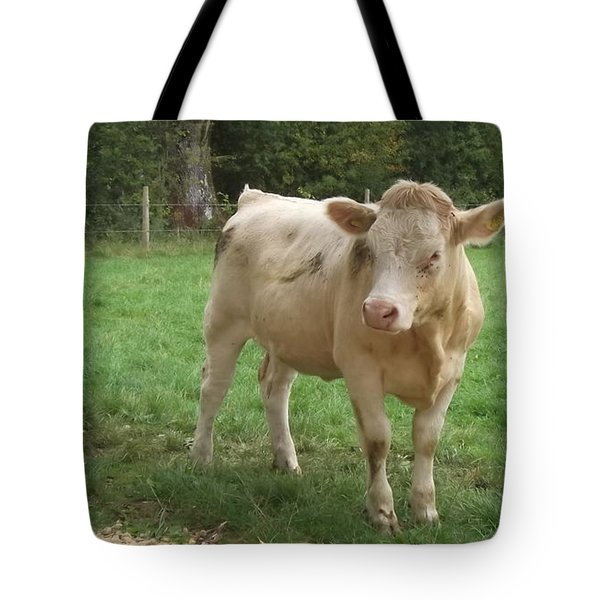 Baby Bull Tote Bag by John Williams