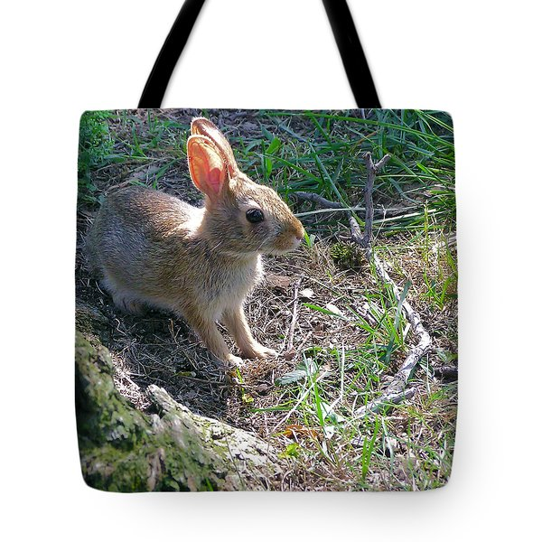 Baby Bunny Tote Bag by Brian Wallace