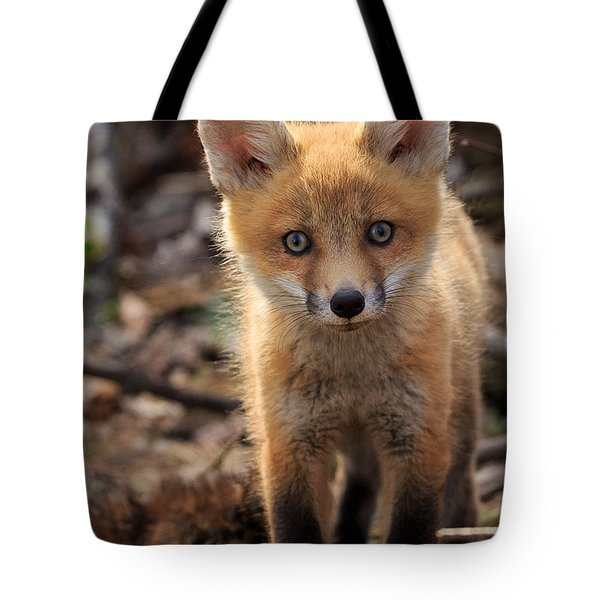 Baby In The Wild Tote Bag by Everet Regal