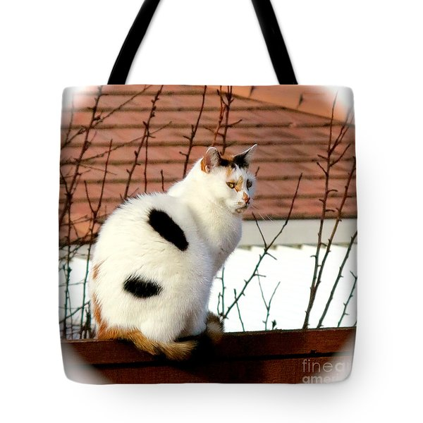 Baby Its Cold Outside Tote Bag by Phyllis Kaltenbach