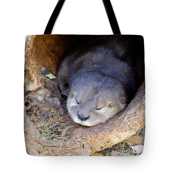 Baby Otter Tote Bag by Mary Deal