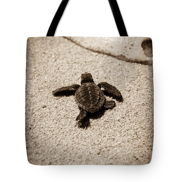 Baby Sea Turtle Tote Bag by Sebastian Musial