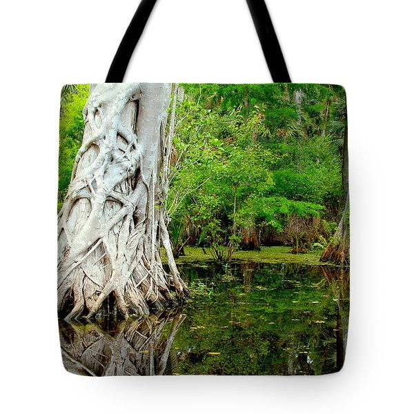 Backcountry Tote Bag by Carey Chen