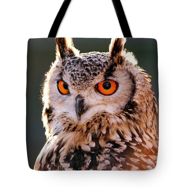 Backlit Eagle Owl Tote Bag by Roeselien Raimond