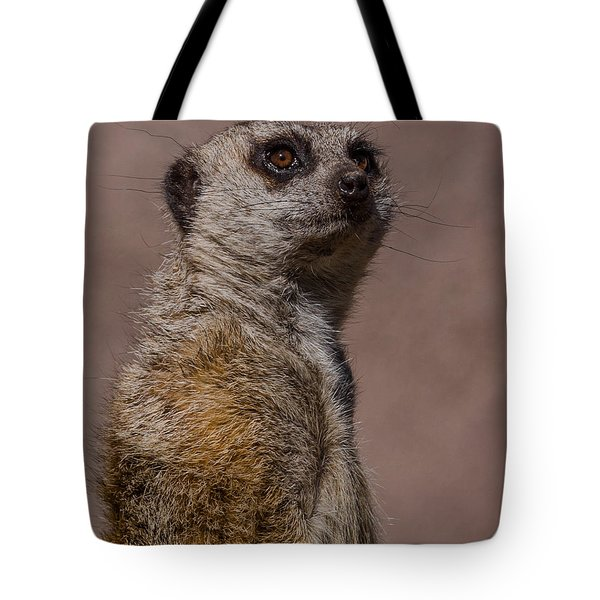 Bad Whisker Day Tote Bag by Ernie Echols