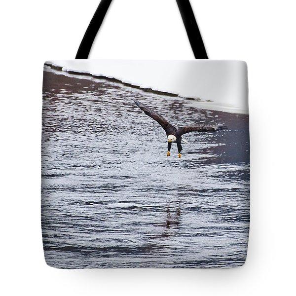 Bald Eagle Tote Bag by Steven Ralser