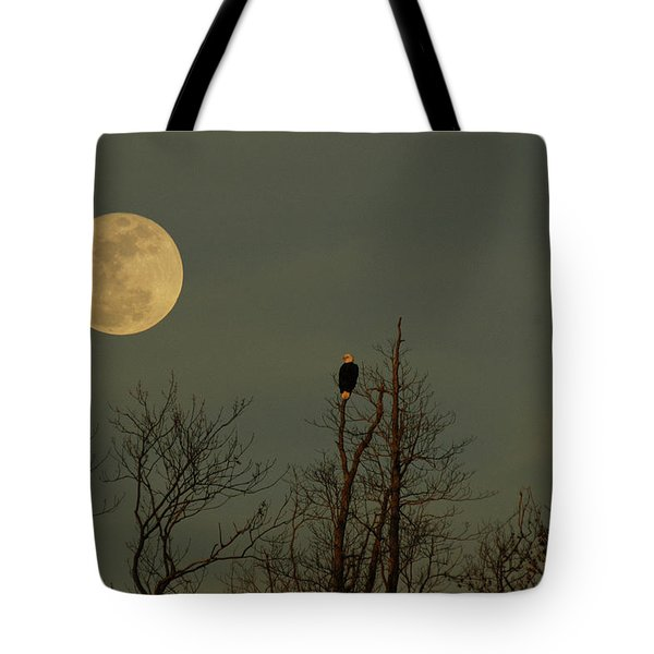 Bald Eagle Watching The Full Moon Tote Bag by Raymond Salani III