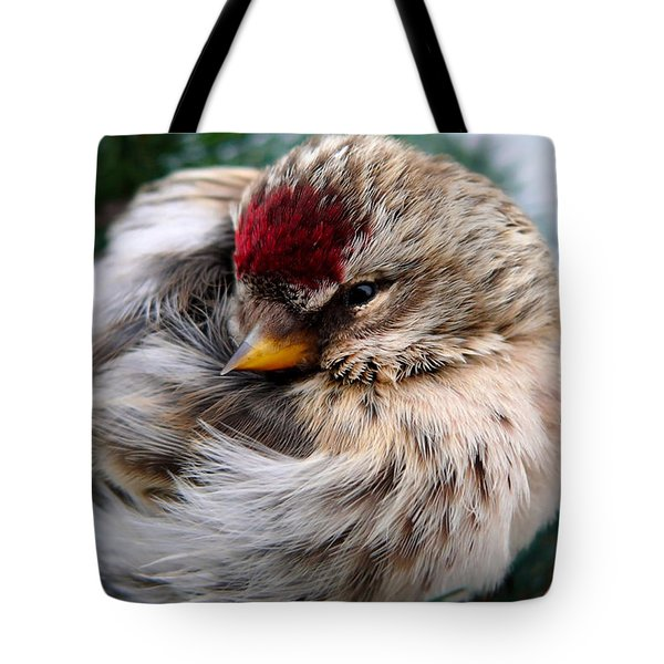 Ball Of Feathers Tote Bag by Christina Rollo