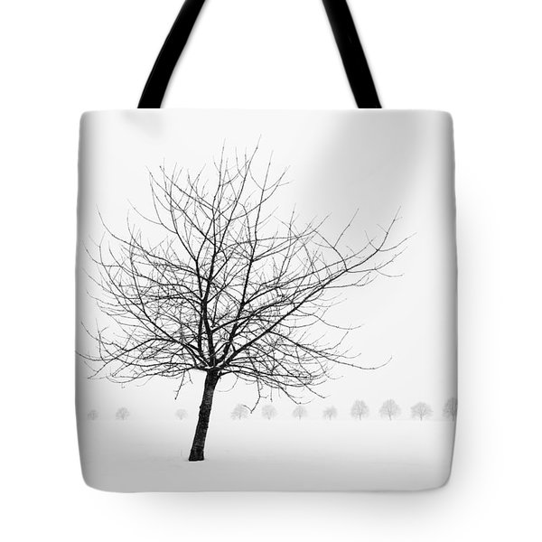 Bare Tree In Winter - Wonderful Black And White Snow Scenery Tote Bag by Matthias Hauser
