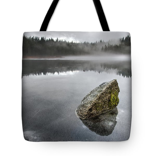Barely Frozen Tote Bag by James Wheeler